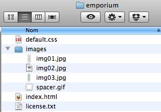 Comment faire pour utiliser Dropbox et héberger gratuitement un site Web - Choix d'un template