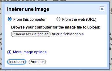 Utilisez Google Docs pour publier des articles sur votre blog - Ajout d'une image dans Google Docs