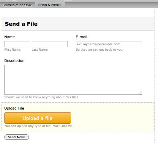 Créez des formulaires Web avec l'aide de Dropbox Forms - Visualisation du formulaire Dropbox