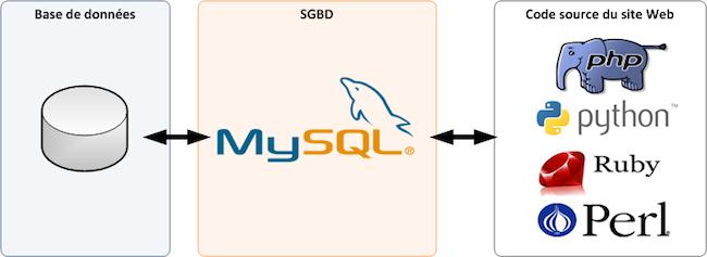 MySQL pour débutants - Schéma d'interactions entre le SGBD, la BDD et le site