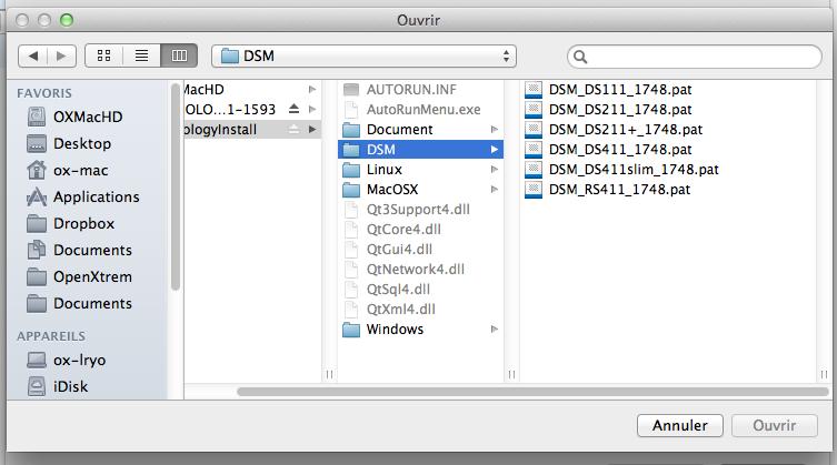 Découvrez le Synology DiskStation DS411 - Choix du DSM