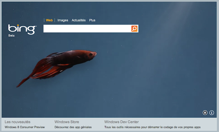 Microsoft annonce la Consumer Preview de Windows 8 sur une page dédiée - Logo Windows 8