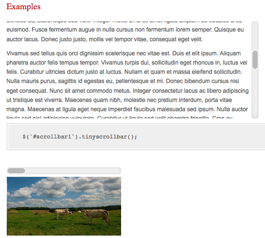 5 plugins jQuery libres à avoir pour les concepteurs Web - Tiny Scrollbar