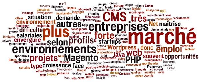 Wordpress, Magento et les autres : quelles positions sur le marché de l'emploi ?