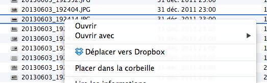Il est possible de déplacer vers Dropbox n'importe quel fichier/dossier