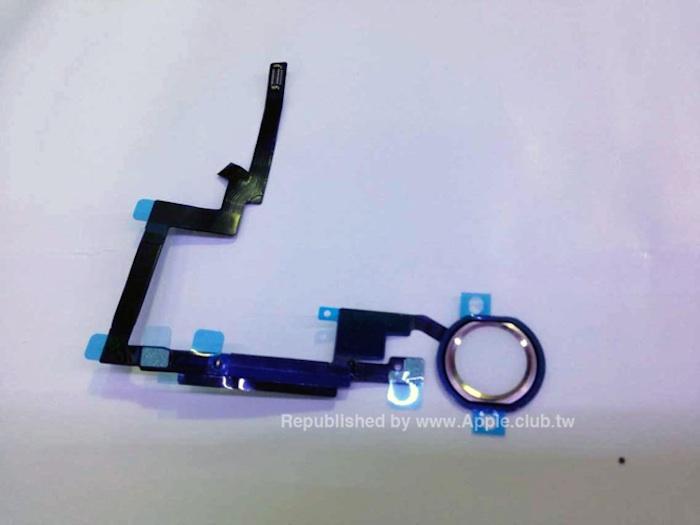 Capteur d'empreintes digitales Touch ID