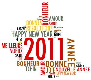 Bonne année à tous et direction 2011 tous ensemble !