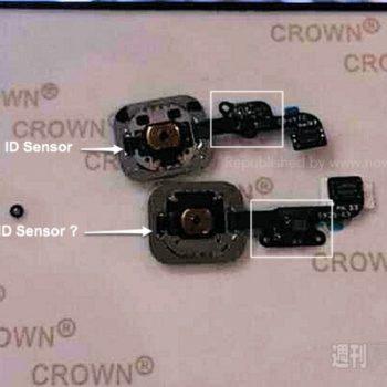 iPhone 6 : le nouveau capteur d