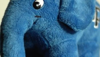 PHP 5.5.0 est officiellement dans les bacs