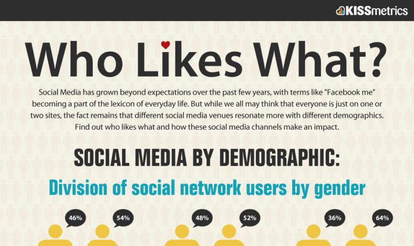 Infographie : Qui Aime Quoi ? Les réseaux sociaux selon les caractéristiques démographiques
