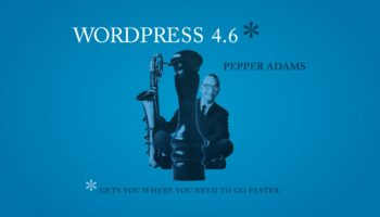 wordpress-4-6-690×388@2x