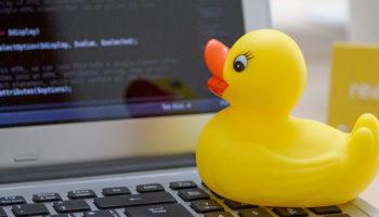 002-duck