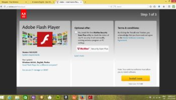 Microsoft Flash