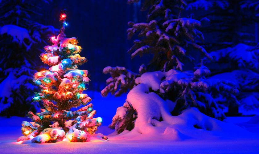 snowy_christmas_tree_lights-wide