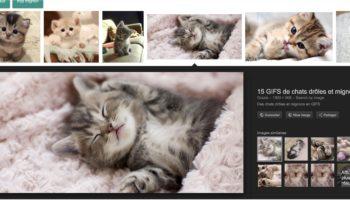 google-images-comment-recuperer-bouton-voir-image