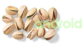 android-pistachio