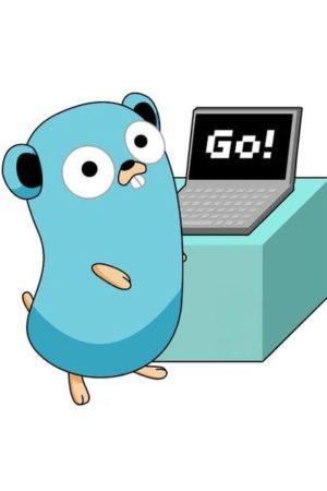 golang-laptop