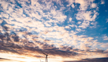 windmills-1